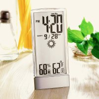 ST-957T Crystalline Weather Station